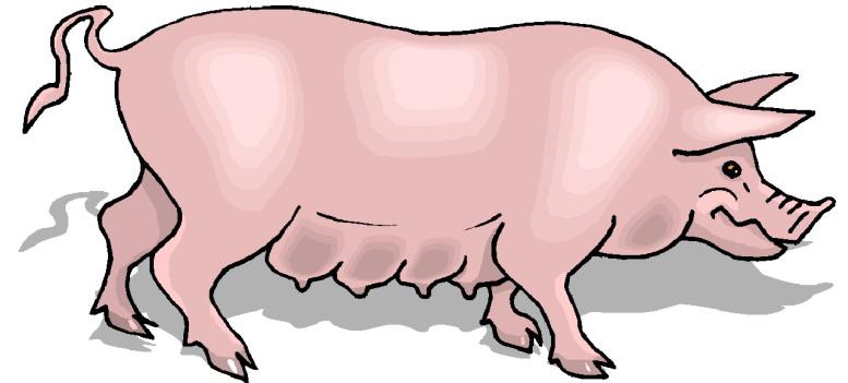 Pig clip art pdf free clipart images