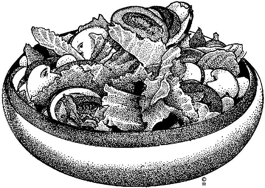 Salad clipart saladclipart vegetable clip art clipart 2