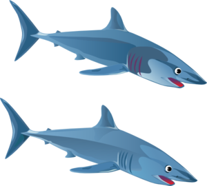 Shark clip art black and white free clipart images 2