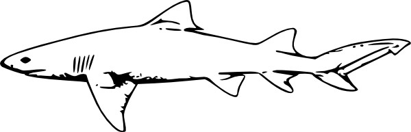 Shark clip art black and white free clipart images 5