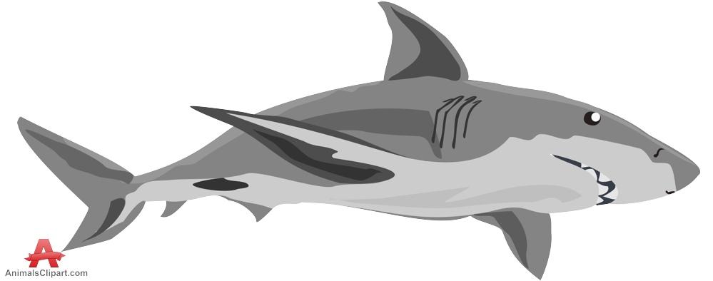 Shark clip art images free clipart 4