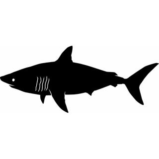 Shark clip art images free clipart 5