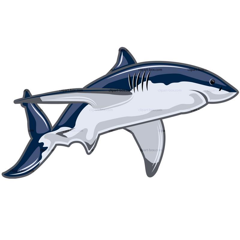 Shark clipart sharks tiger shark image 4 3