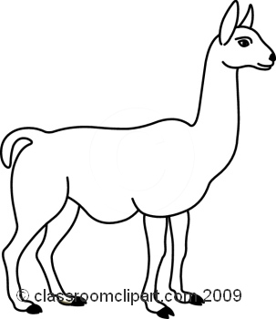 Cartoon alpaca vs llama clipart free alpacas and image