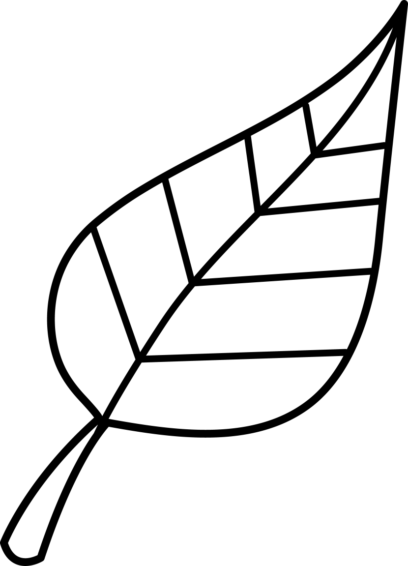 Leaf  black and white leaf clipart black and white free images