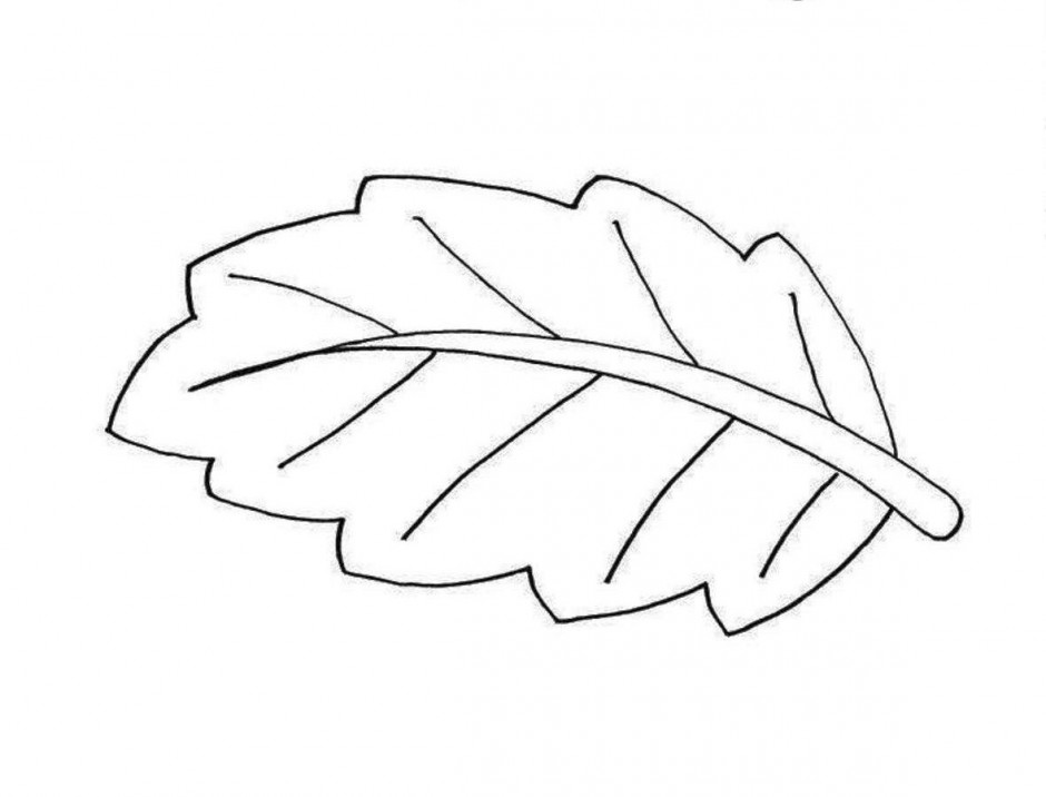 Leaf  black and white leaf images black and white free download clip art
