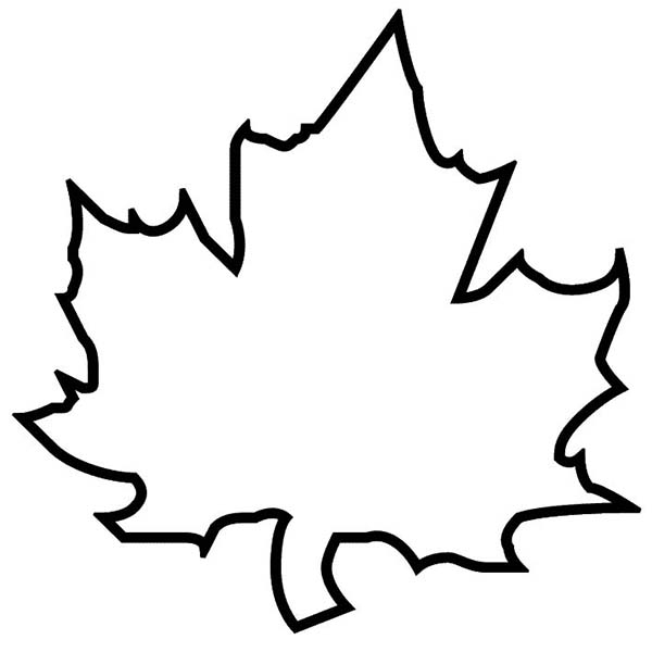 Leaf  black and white leaves black and white autumn leaf clipart 3