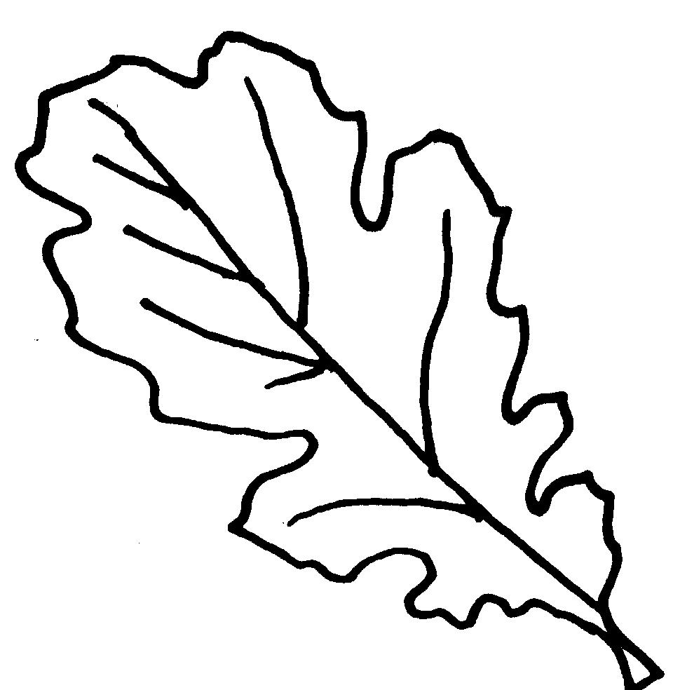 Leaf  black and white leaves black and white free oak leaf clipart clipart 4