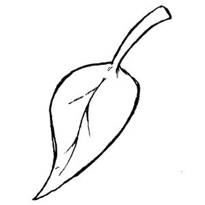 Leaf  black and white september leaves clipart black and white collection 2