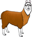 Llama clip art