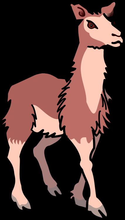 Llama free to use clipart