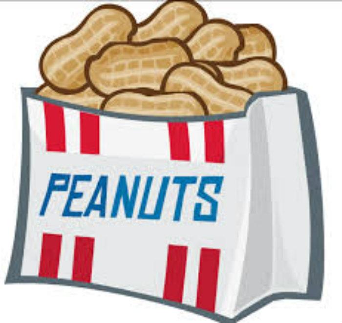 Peanut clipart 3