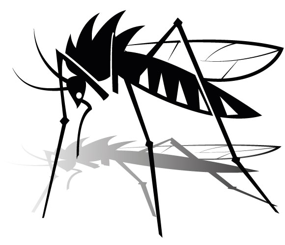 Mosquito clip art the cliparts