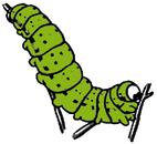 Seaweed caterpillar clipart