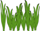 Seaweed clipart free images 3