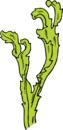 Seaweed clipart vector clip art free design