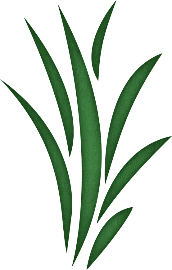Seaweed free grass clipart clip art library