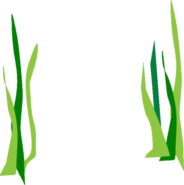 Seaweed green reeds clip art at vector clip art