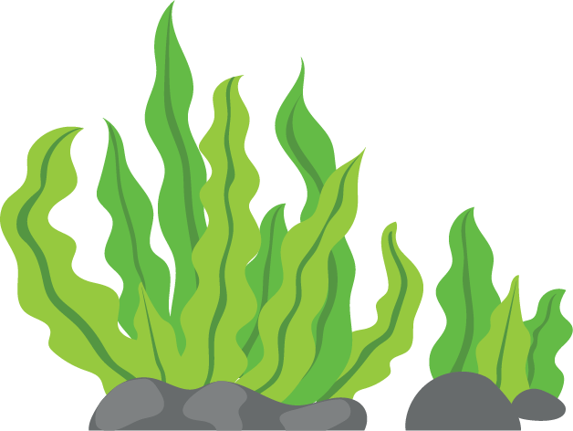 Seaweed manage clipart