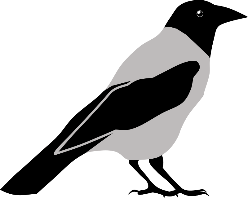 Crow clipart birds and clip art photo crowclipart 2 clipartbarn