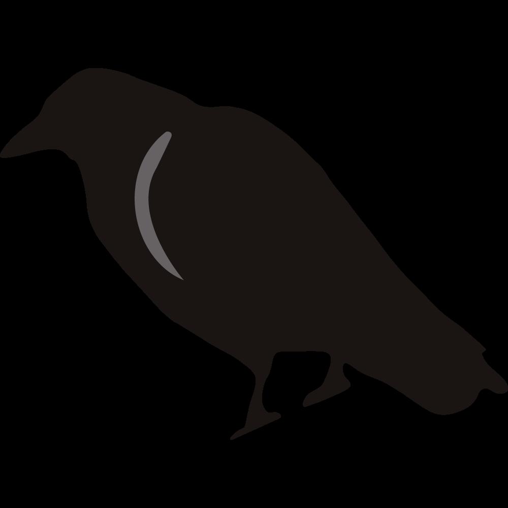 Crow clipart birds and clip art photo crowclipart clipart
