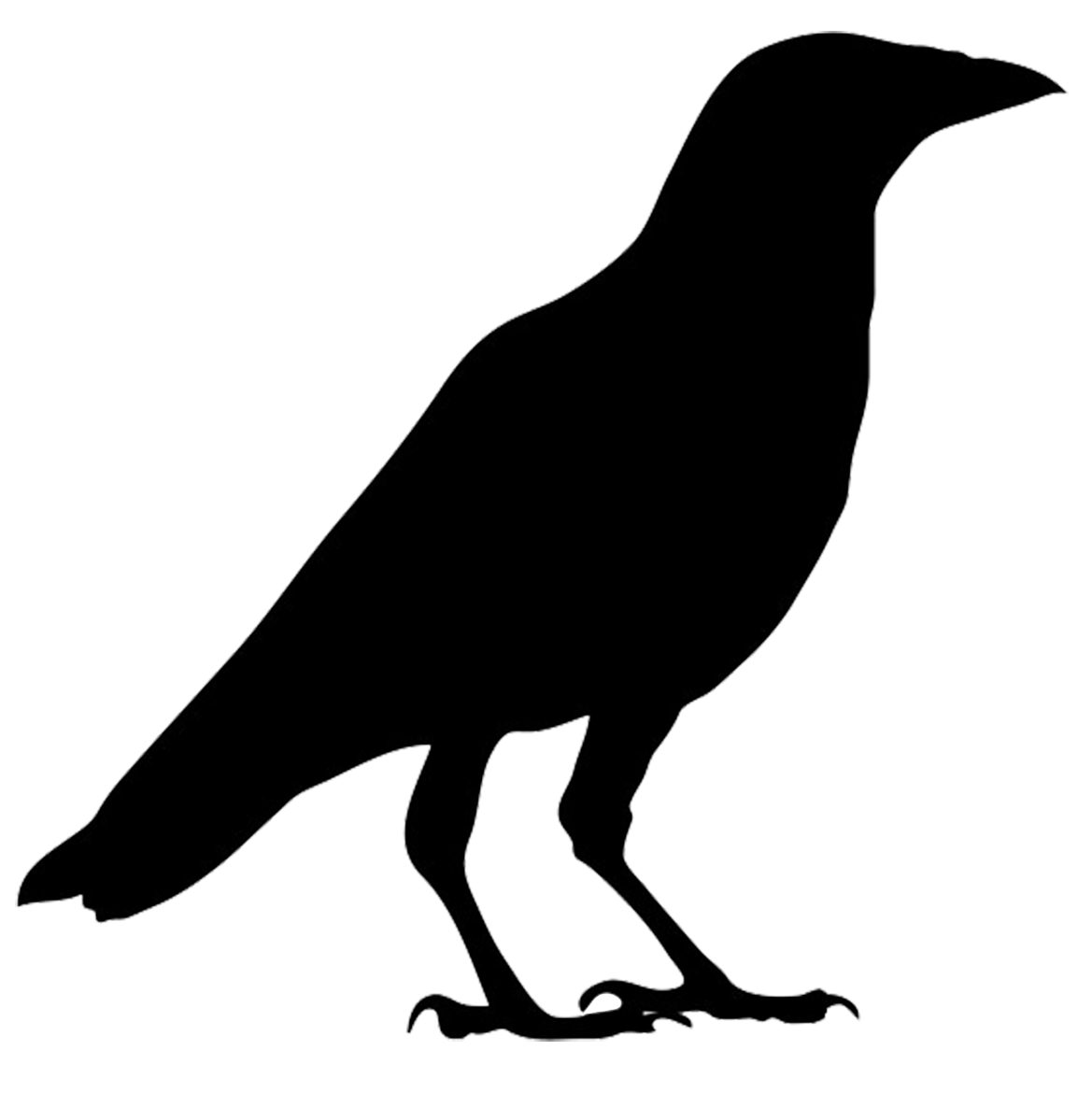 Crow clipart clipartfox clipart