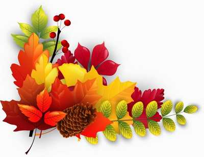Fall leaves bright autumn leaves clipart download free
