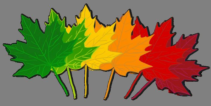 Fall leaves clip art beautiful autumn clipart 3 image