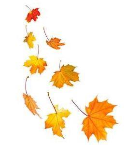 Fall leaves fall clip art autumn clipart 14