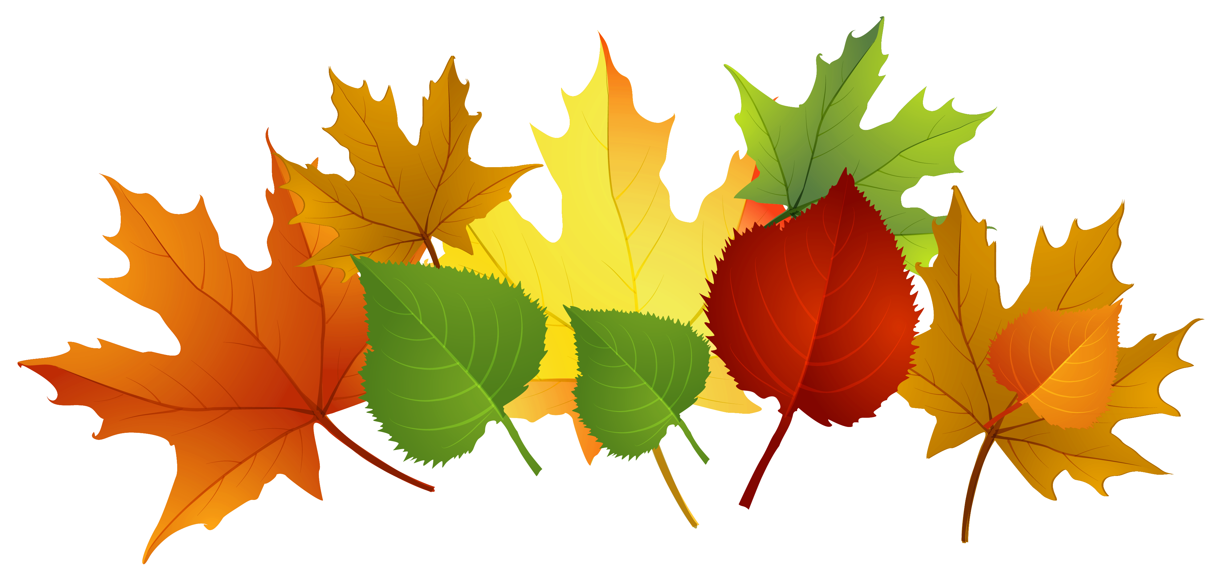 Fall leaves photos of fall leaf clip art leaves free