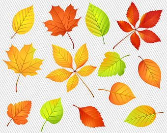 Fall leaves top fall leaf clip art free clipart image