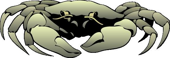 Free crab clip art