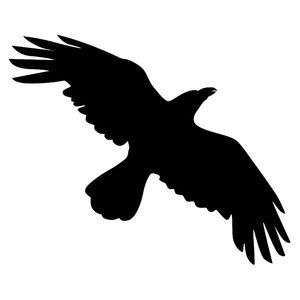 Free s rgbstock free images silhouette crow clipart