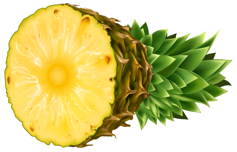 Hospitality pineapple free clipart images