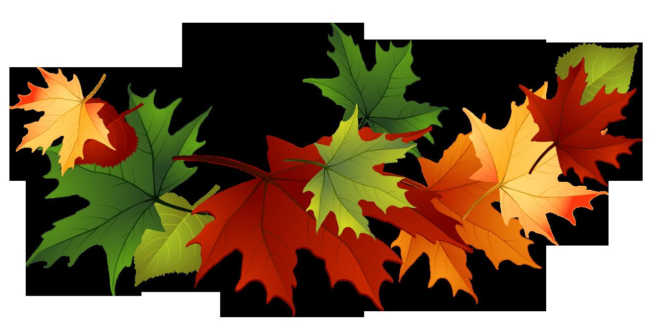 Leaf fall leaves clip art beautiful autumn clipart image