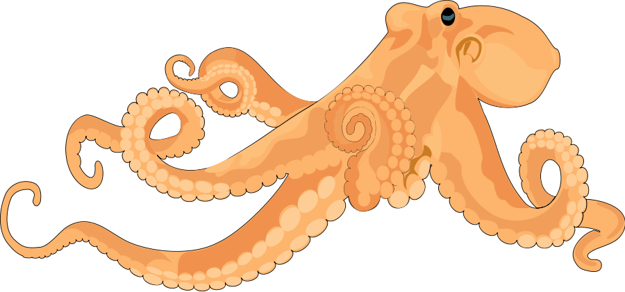 Octopus clipart 2 image