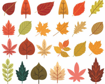 Top fall leaves clip art free clipart image 3