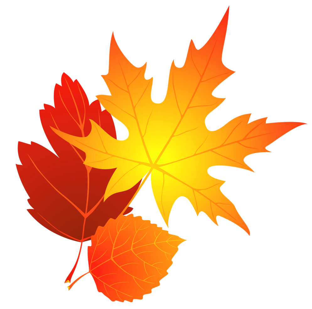 Transparent fall leaves clipart 0