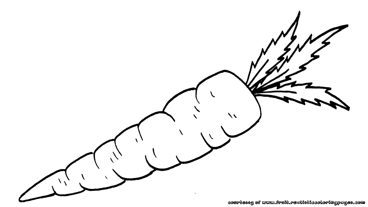 Vegetables  black and white color carrot clipart explore pictures 2