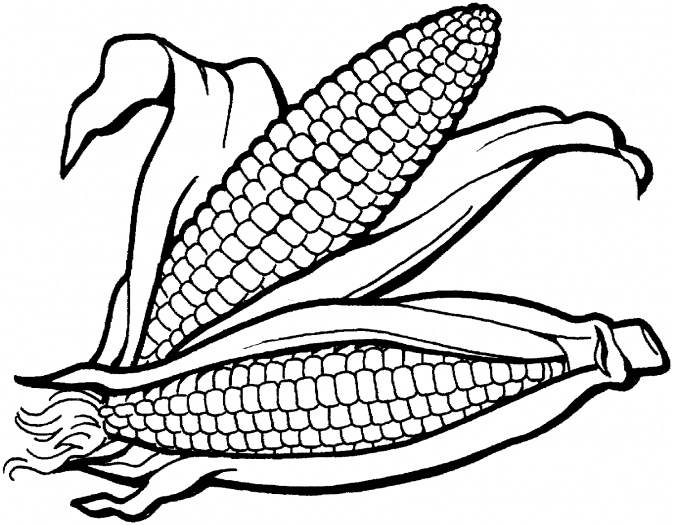Vegetables  black and white corn clipart black and white vegetable clip art