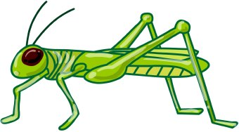 Grasshopper clip art free clipart images