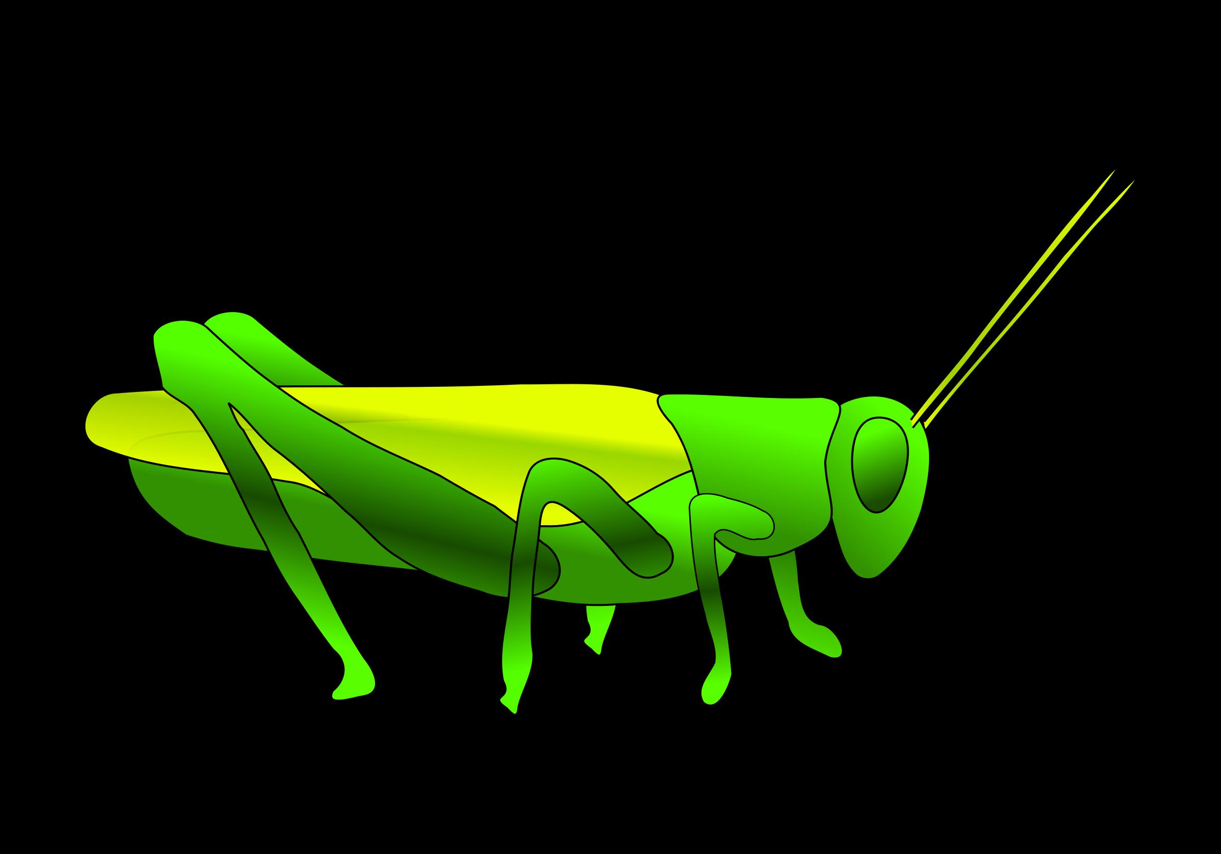 Grasshopper clipart 1