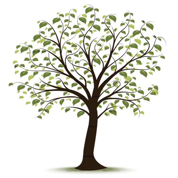 Ideas about tree clipart on templates 2 clipartandscrap