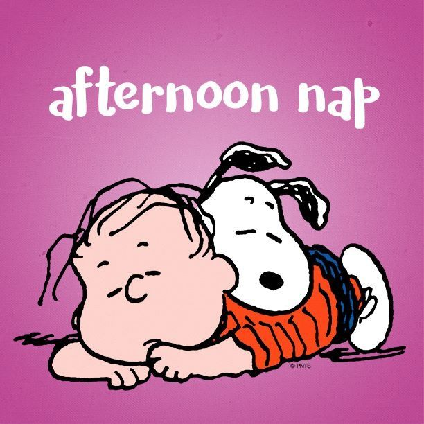 Nap time quotes ideas on naps funny funny clipart