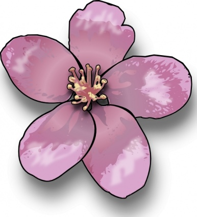 Peach blossom clip art clipart free download