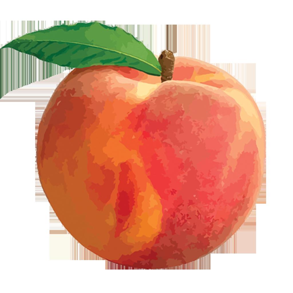 Peach clip art 4