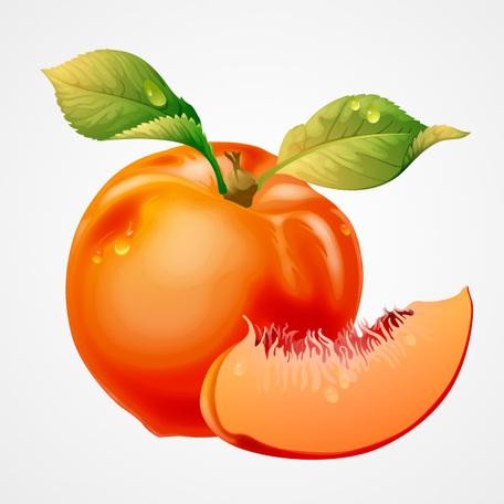Peach clip art vector peach graphics clipart me image