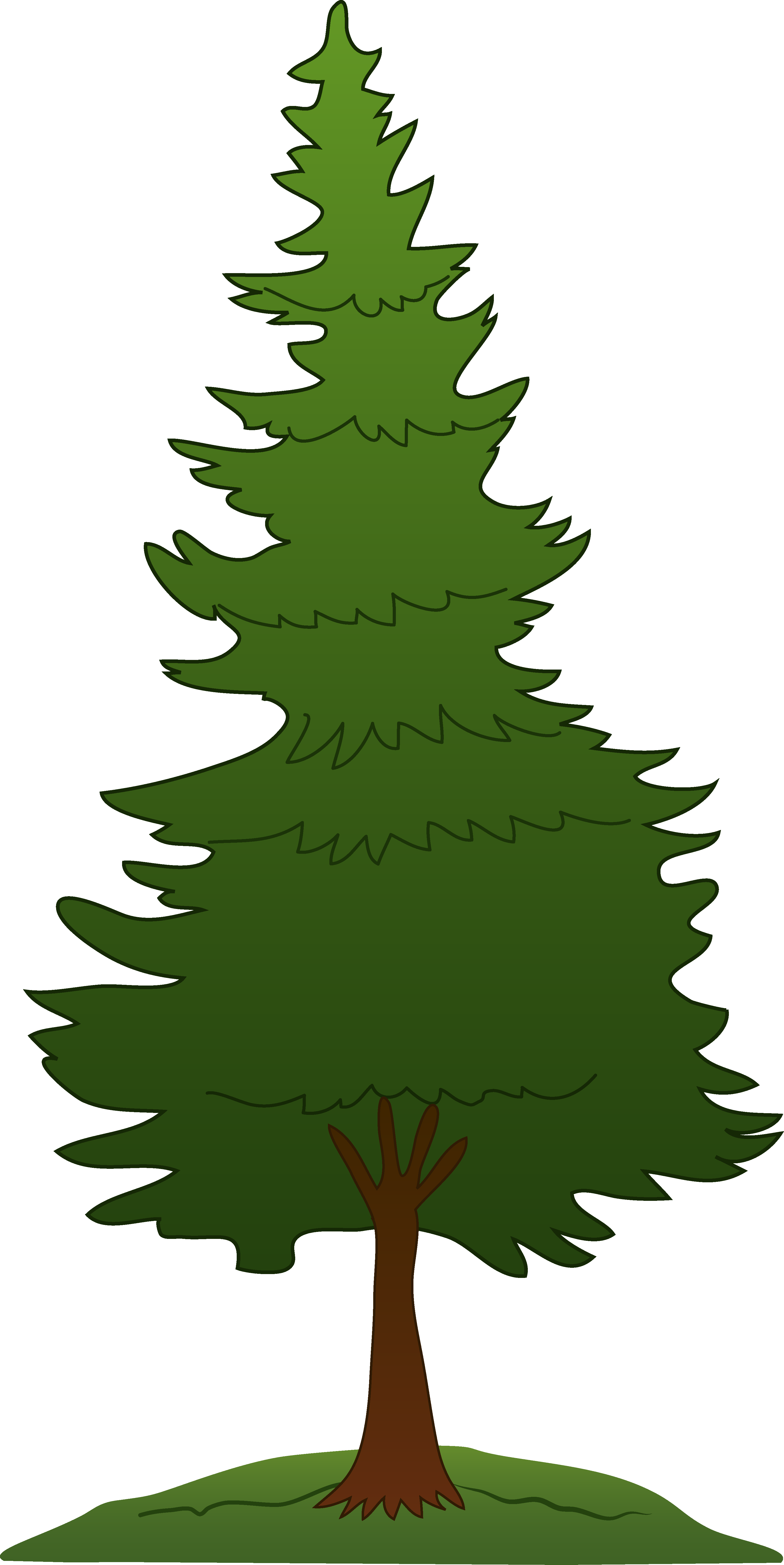 Pine tree clipart free images