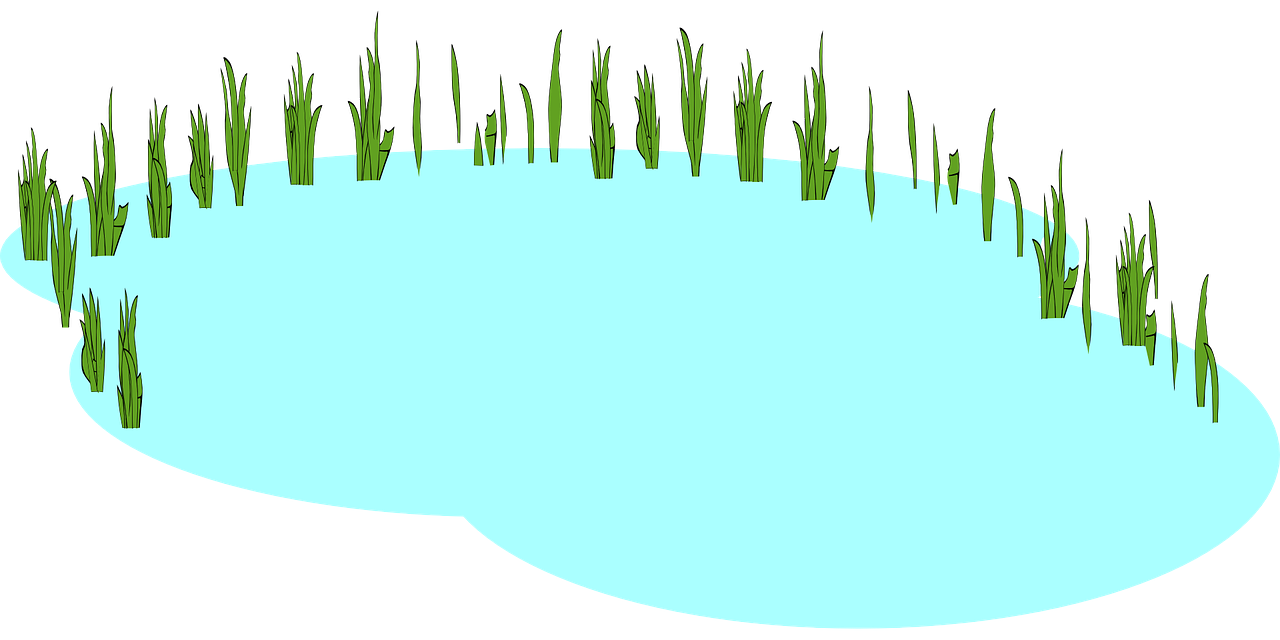Pond free to use clip art clipart