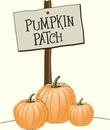 The pumpkin patch oakes farm clipart